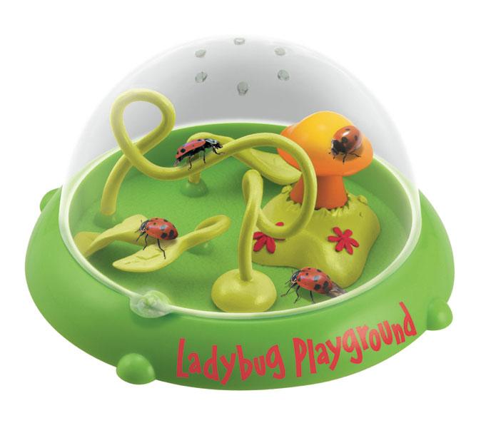 Ladybug PlayGround