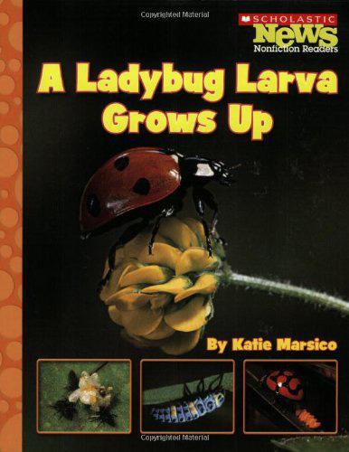 "Book: ""A Ladybug Larva Grows Up"" by K. Marsico"