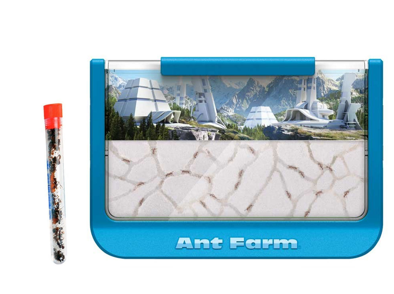 Blue Mountains Ant Farm With 1 Tube of Ants